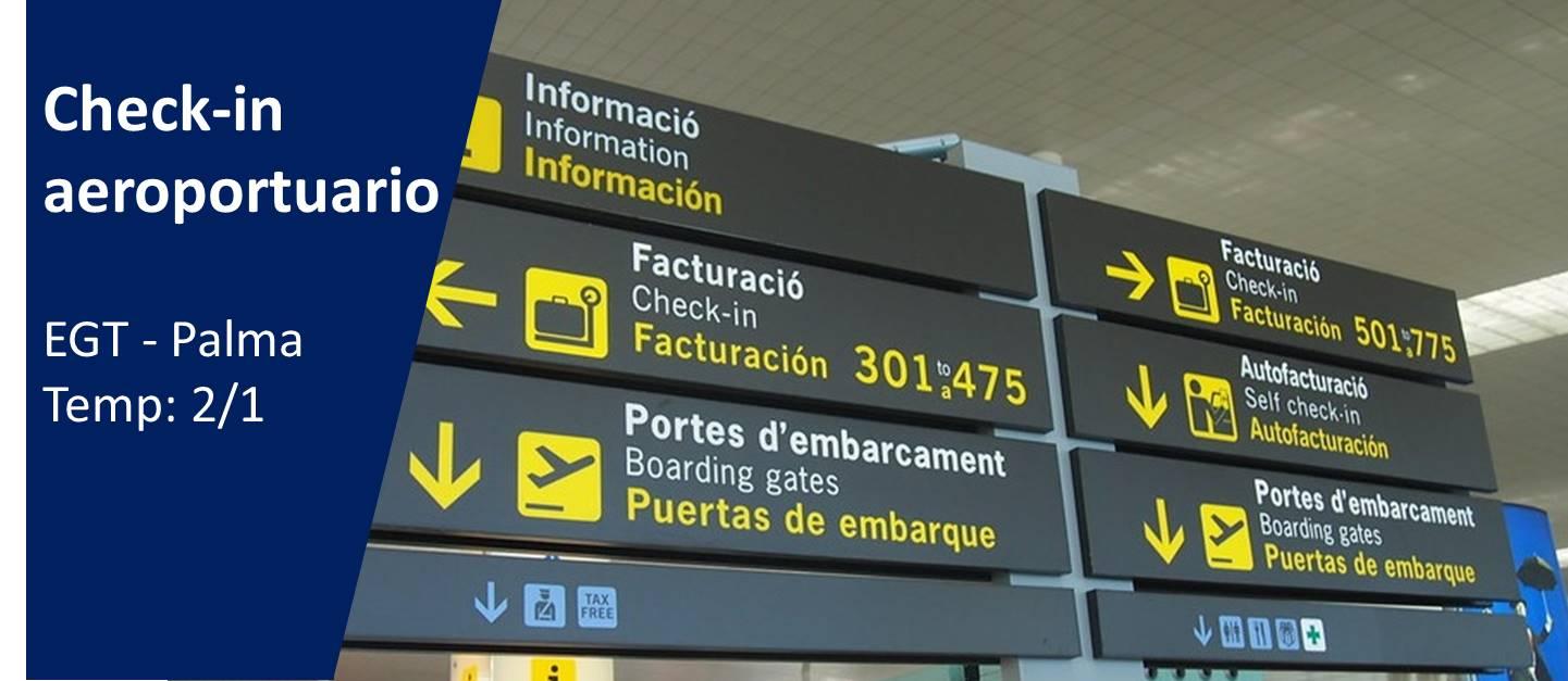 Course Image Check-in Aeroportuario (1º Semestre Prof.: Maribel Cervera)